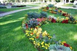 Розы в оформлении ландшафтного дизайна