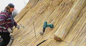 Экологичная крыша из камыша