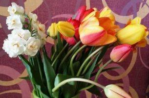 Искусственные и живые цветы в интерьере: правила использования