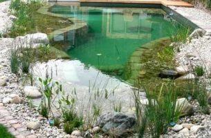Как сделать садовый пруд на своем участке