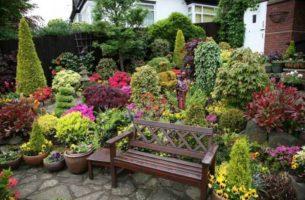 Декоративные элементы сада