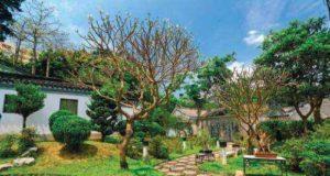 Стиль сада – традиции и современность