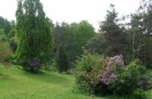 Ландшафтный дизайн: ТОП-5 ошибок в проектах