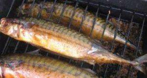Коптильня своими руками или домашняя коптильня для рыбы