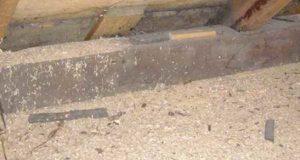 Утепление дома опилками. Теплоизоляционные материалы для дома