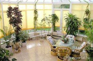 Зимний сад для начинающего: практика и теория