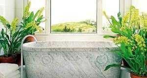 Как правильно разместить цветы в ванной