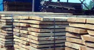 Породы дерева для строительства