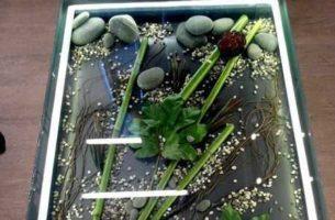 Стеклянный пол и методы его декорирования