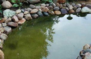 Как сделать искусственный пруд своими руками