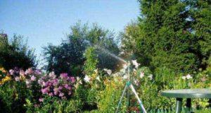 Как выбрать насос для полива огорода