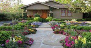 Какие многолетние садовые цветы посадить на даче