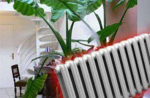 Как увлажнить воздух в комнате: самые эффективные способы