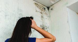 Как избавиться от запаха сырости в квартире и частном доме