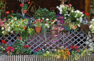 Идеи оригинальных деревянных заборов для дачи